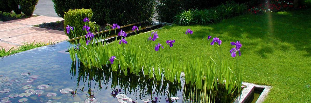 progettazione realizzazione e manutenzione giardini aree